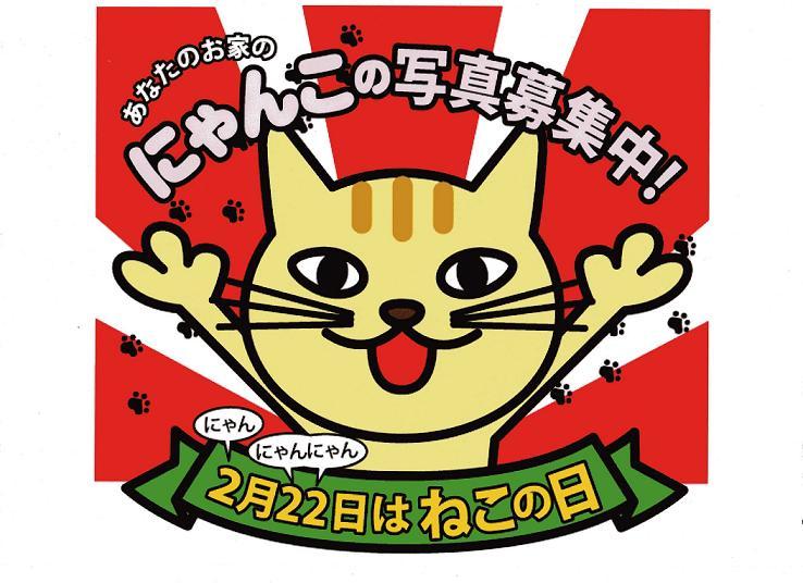 """""""ブロにゃんゲーム""""始まり~♪_b0177130_20534080.jpg"""
