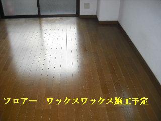 f0031037_229254.jpg