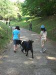 ろくお散歩.jpg