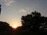 雨上がりの夕陽.jpg