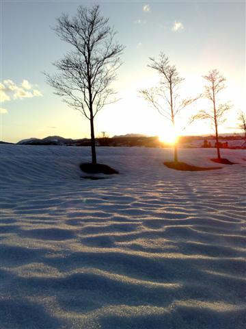 雪の模様_b0132338_18562487.jpg
