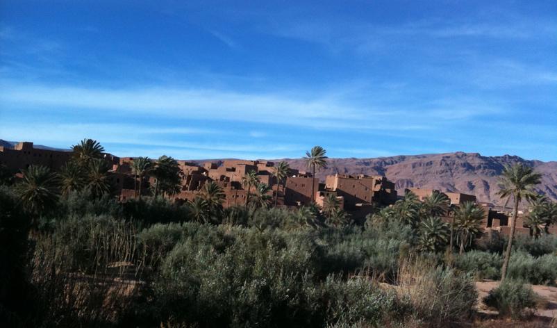 モロッコの自然_e0109554_21345052.jpg