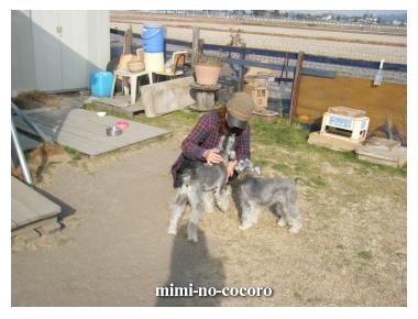 f0155381_200333.jpg