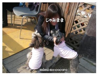 f0155381_2012431.jpg