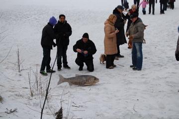 この冬のべルリンは尋常じゃなく寒い証。_c0180686_22351736.jpg