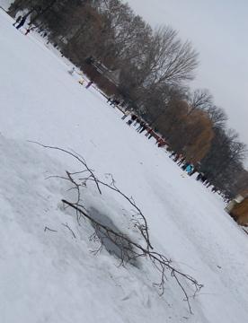 この冬のべルリンは尋常じゃなく寒い証。_c0180686_23412527.jpg