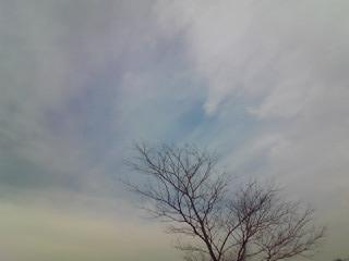 e0182806_20112015.jpg