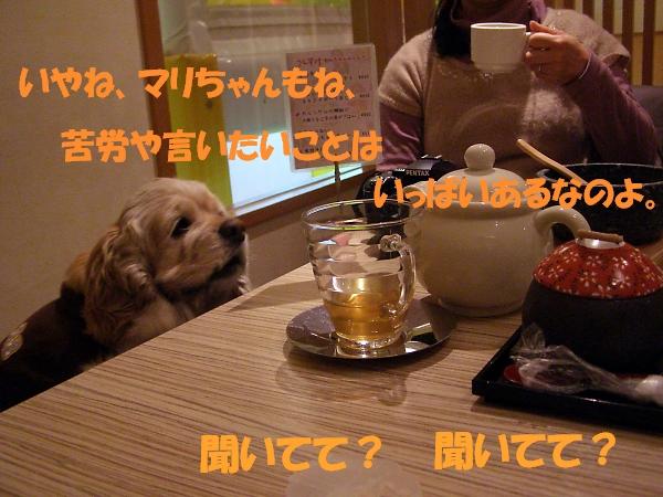 b0067012_019417.jpg