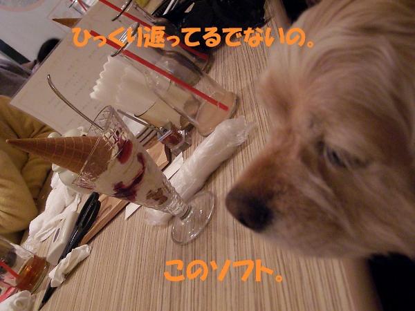 b0067012_0534486.jpg