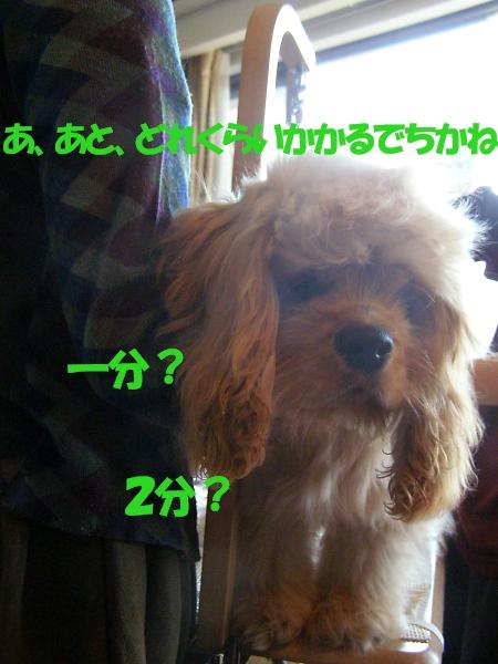 b0067012_22192151.jpg