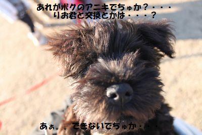 f0197317_10494138.jpg