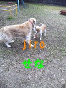 c0209636_19312282.jpg