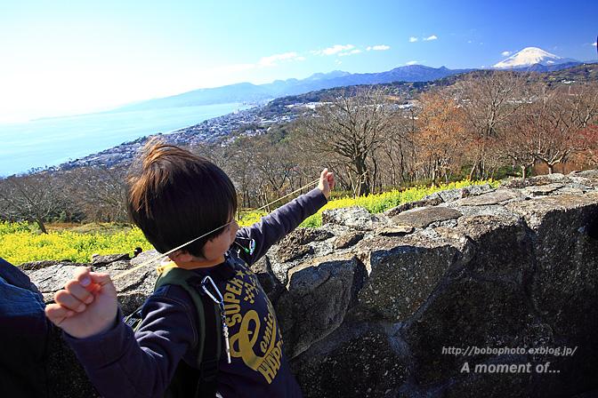 吾妻山公園からの眺め!_d0143741_23383927.jpg