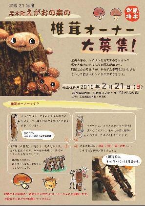 椎茸オーナー募集!_a0147946_2018554.jpg