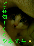 c0052756_22261568.jpg