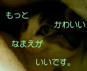 c0052756_22261581.jpg