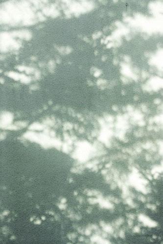 f0206068_19113057.jpg