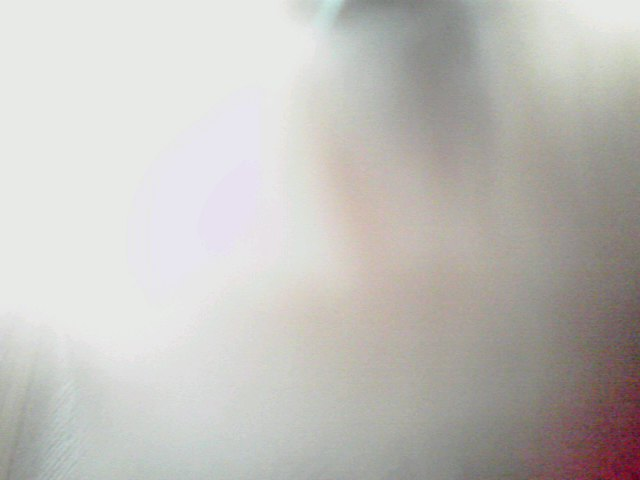 f0016783_11419.jpg