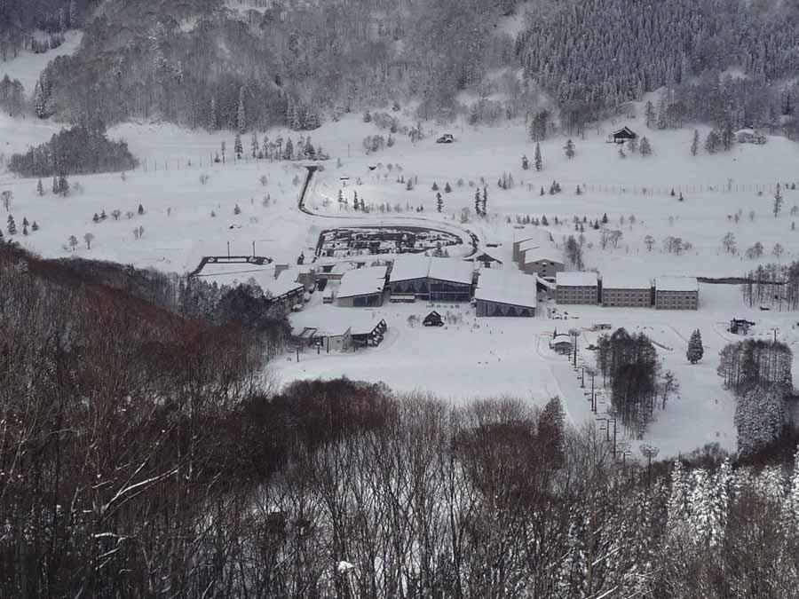 深雪は嬉し楽し_c0223095_156469.jpg