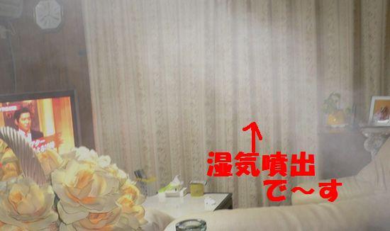 f0178701_012760.jpg