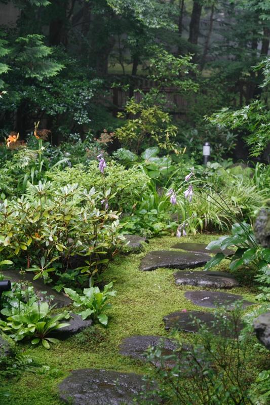 夏の庭_f0091207_22211326.jpg