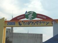 d0006323_151139.jpg