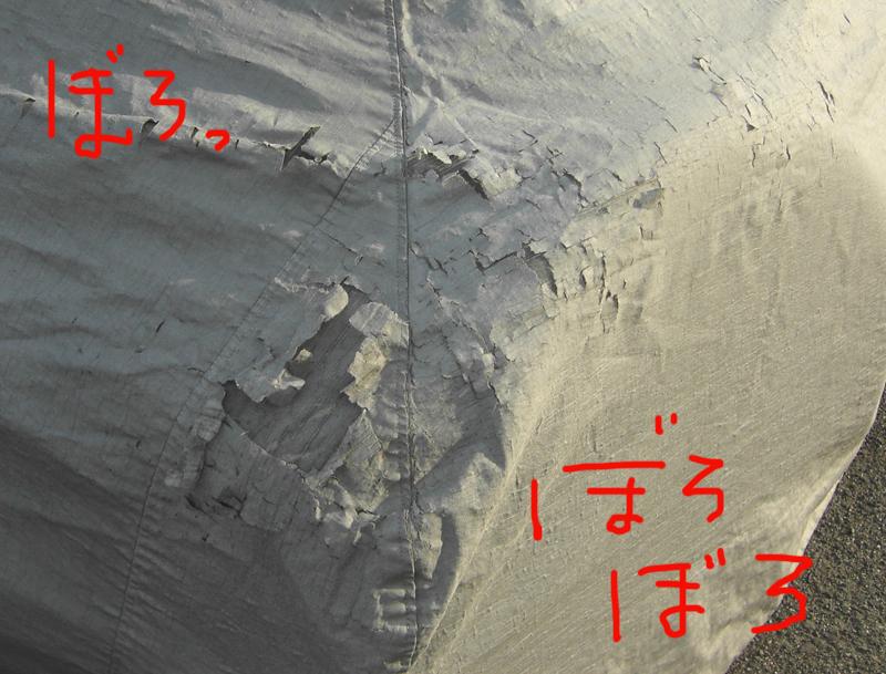 f0103831_11295663.jpg