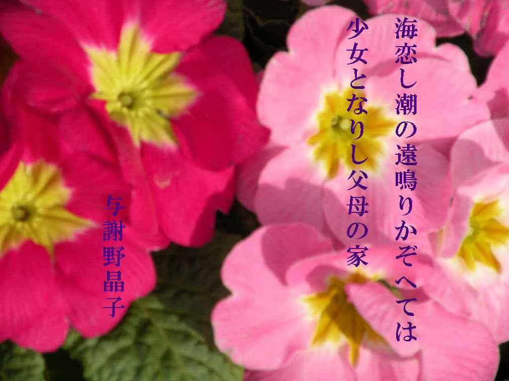 f0117041_16282946.jpg