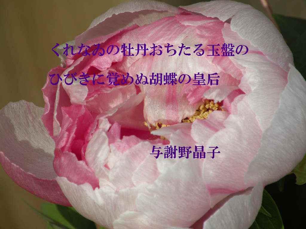 f0117041_16284134.jpg
