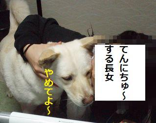 f0195543_231932100.jpg