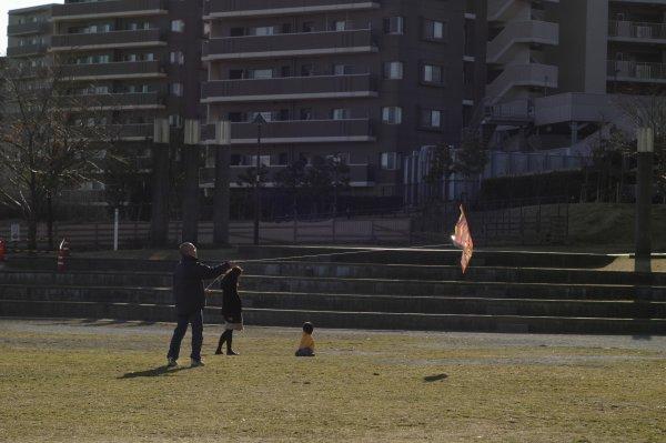 若葉台公園_e0129750_1845254.jpg