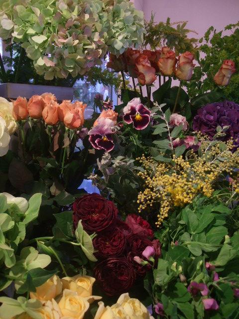 オークリーフ(花の色)_f0049672_16575240.jpg
