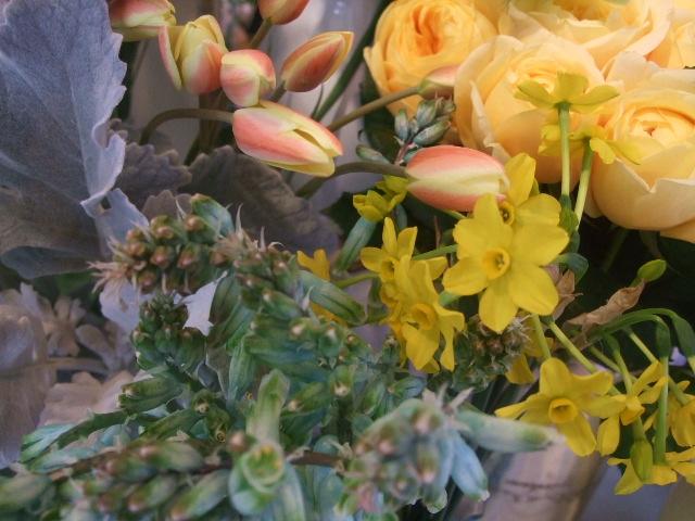 オークリーフ(花の色)_f0049672_16584425.jpg