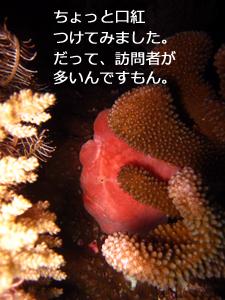 f0144385_0305540.jpg