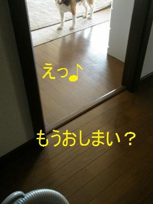 c0205806_1719424.jpg
