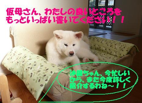 f0121712_23372724.jpg