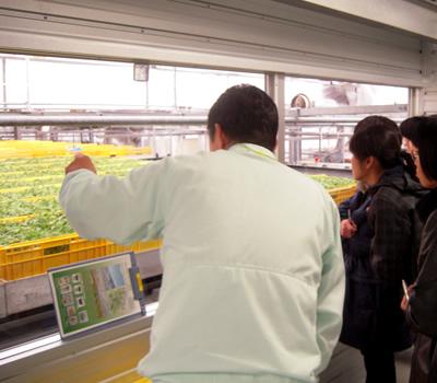 スプラウト工場 工場見学_d0063218_145220100.jpg