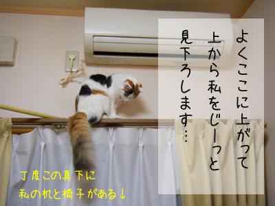 f0008935_344784.jpg