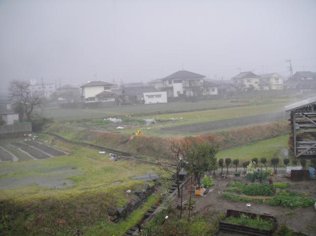 暴風雨_c0108460_10164987.jpg