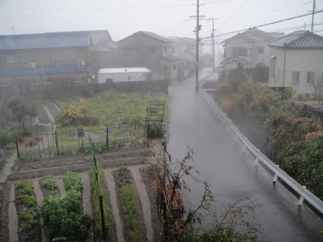 暴風雨_c0108460_10172541.jpg