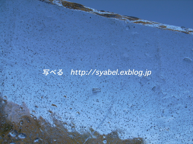 c0153764_1945186.jpg