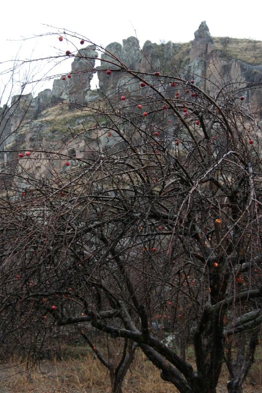 Turkey5 Nevşehir,urgup,Göreme National Park and Rock Site of Cappadocia_d0133581_1275772.jpg