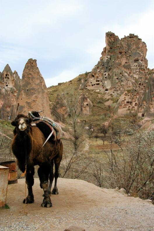 Turkey5 Nevşehir,urgup,Göreme National Park and Rock Site of Cappadocia_d0133581_2132176.jpg