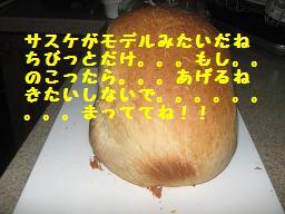 d0104209_22212087.jpg