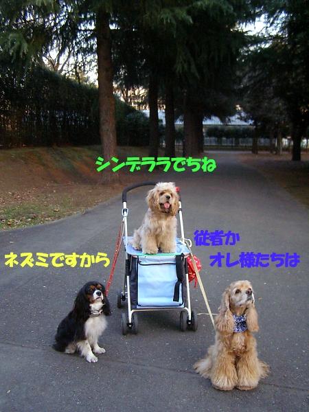 b0067012_042218.jpg
