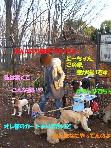 b0067012_0433833.jpg