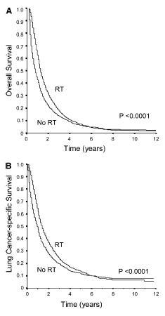 切除不能高齢者stageI-II NSCLC患者へのRT単独治療は妥当_e0156318_16403521.jpg