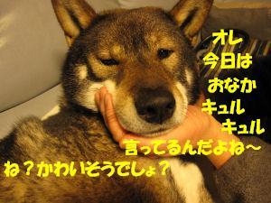 f0143123_2034612.jpg