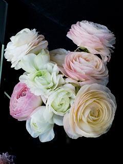 花の空間_c0187025_2318890.jpg