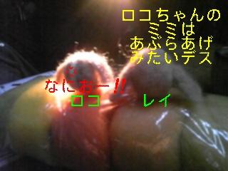 f0148927_18453253.jpg